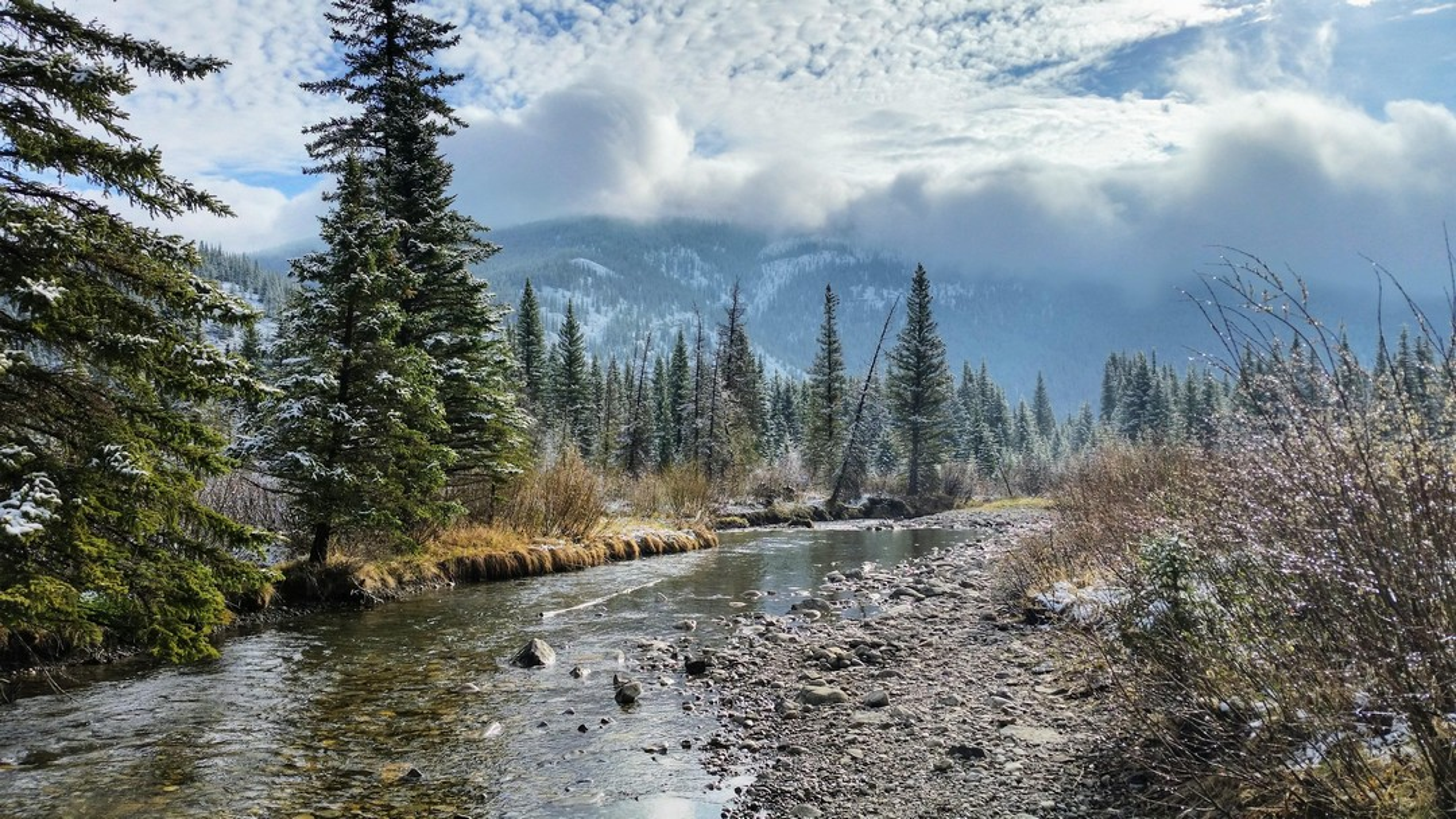 Самое интересное : Красота природы на фотографиях успокаивает и вдохновляет